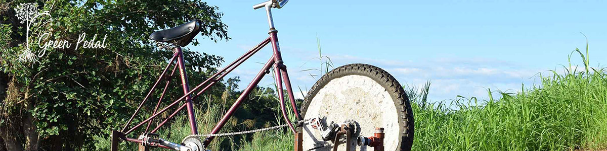 Pedal for Development