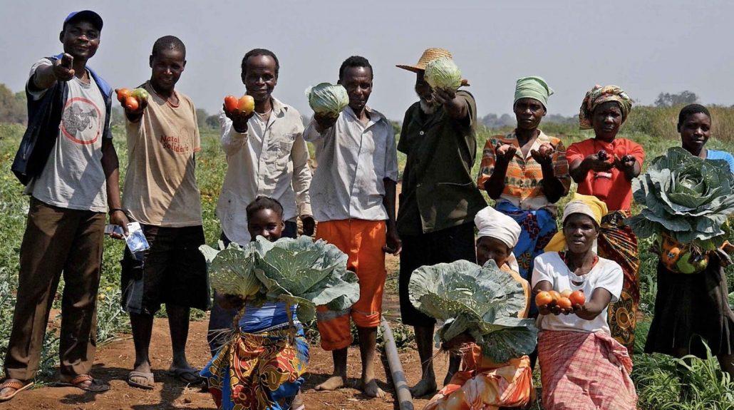 Farmer Families