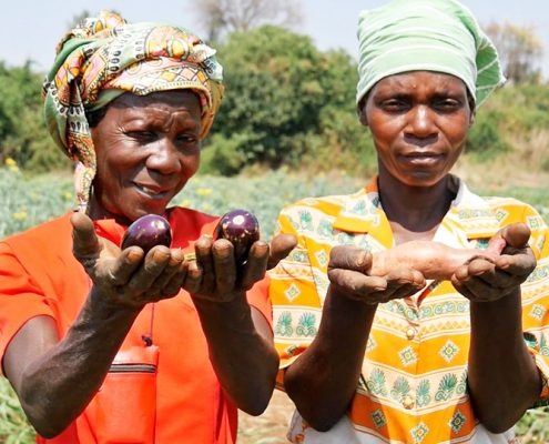 Women farmers showing food they grown